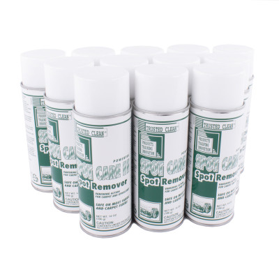 Trusted Clean Spot Care II - Case of Aerosol Cans