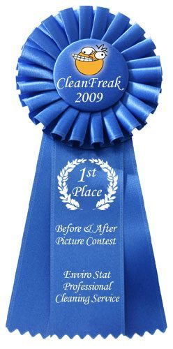 2009 CleanFreak Before & After Picture Contest 1st Place Winner