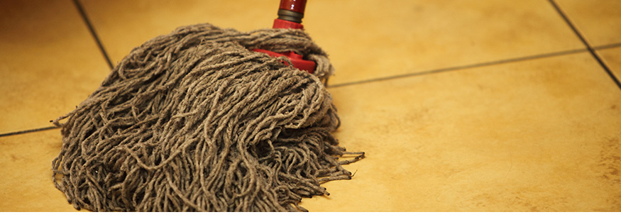 What is lurking in your mop?