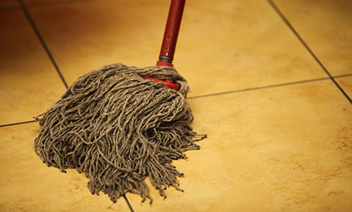 What's lurking in your mop?